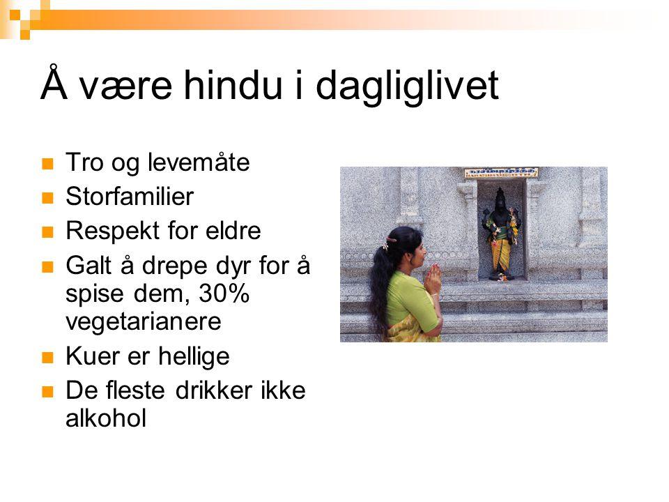 Å være hindu i dagliglivet