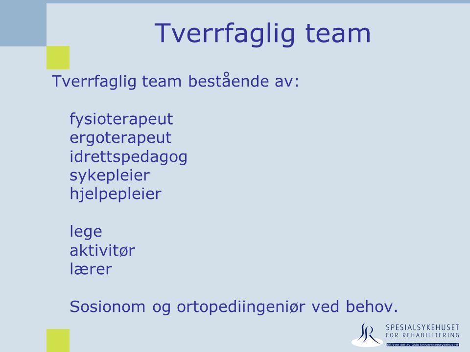Tverrfaglig team Tverrfaglig team bestående av: fysioterapeut