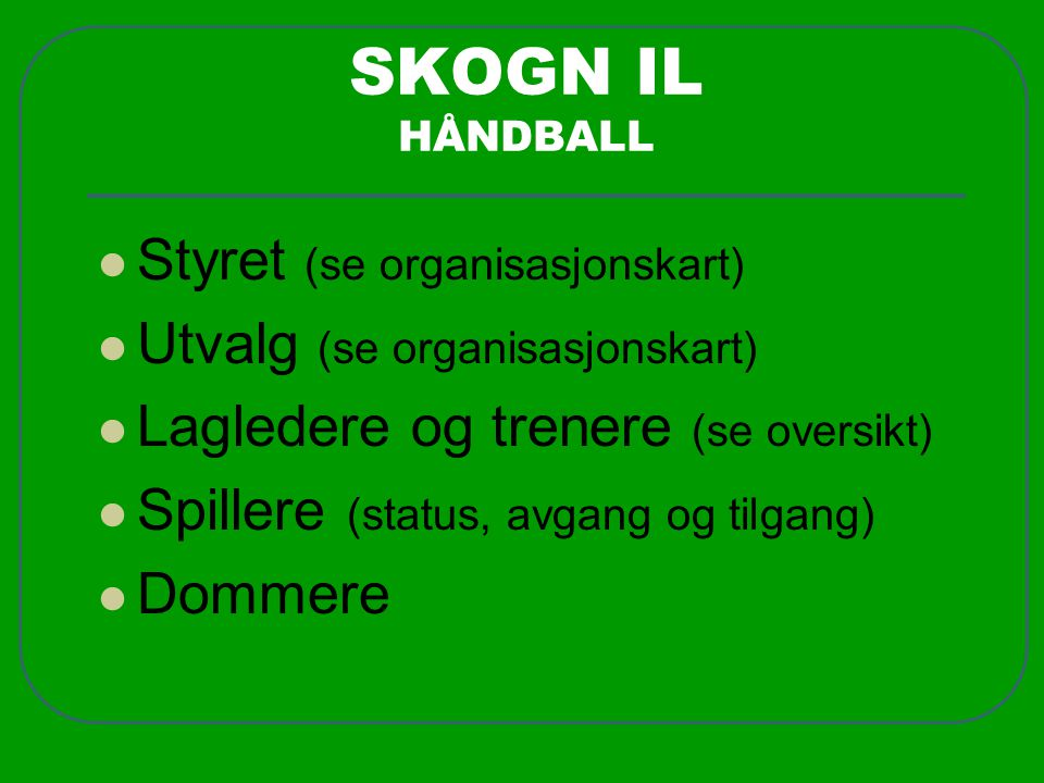 SKOGN IL HÅNDBALL Styret (se organisasjonskart)