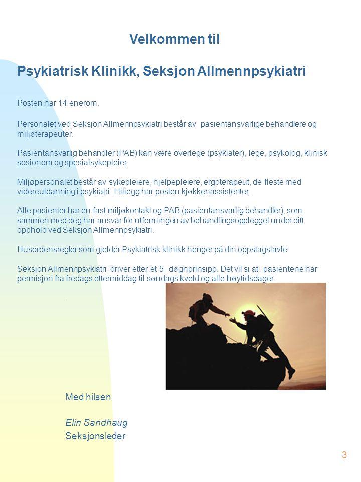 Psykiatrisk Klinikk, Seksjon Allmennpsykiatri