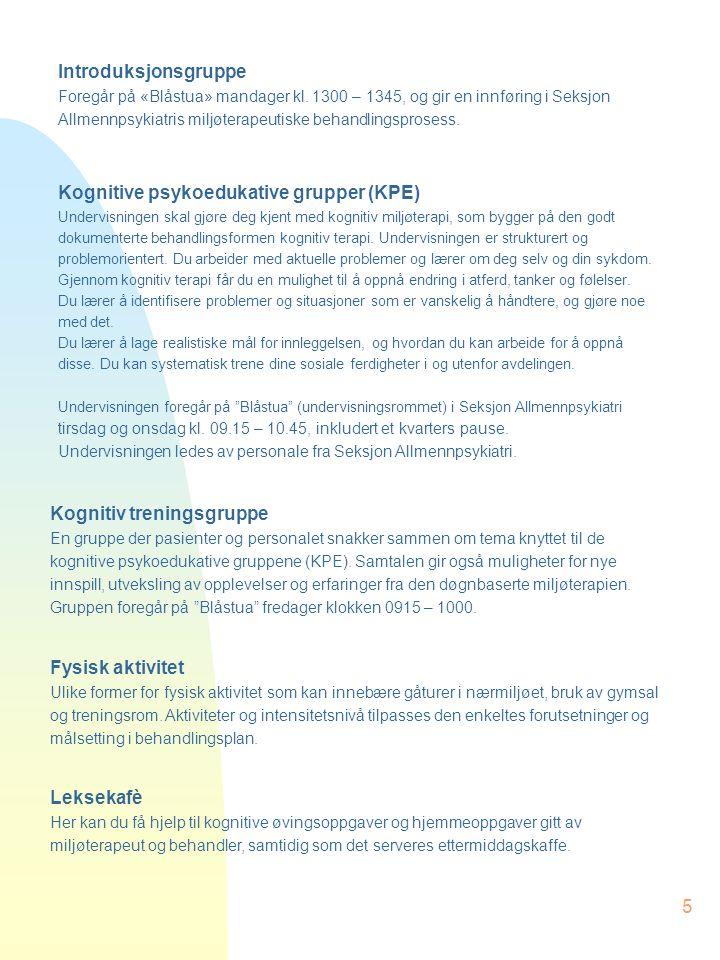 Kognitive psykoedukative grupper (KPE)