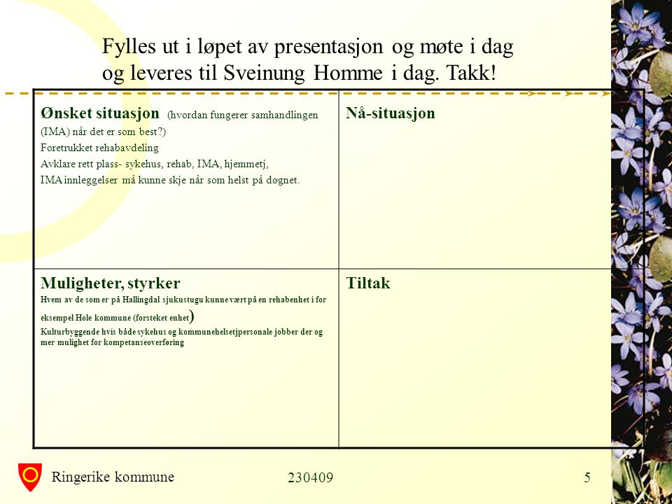 Fylles ut i løpet av presentasjon og møte i dag og leveres til Sveinung Homme i dag. Takk!