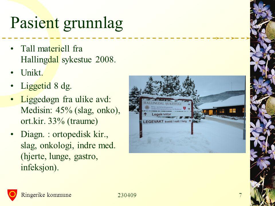 Pasient grunnlag Tall materiell fra Hallingdal sykestue 2008. Unikt.