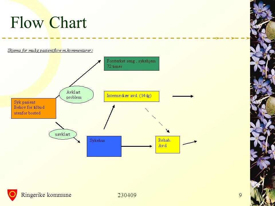 Flow Chart 230409