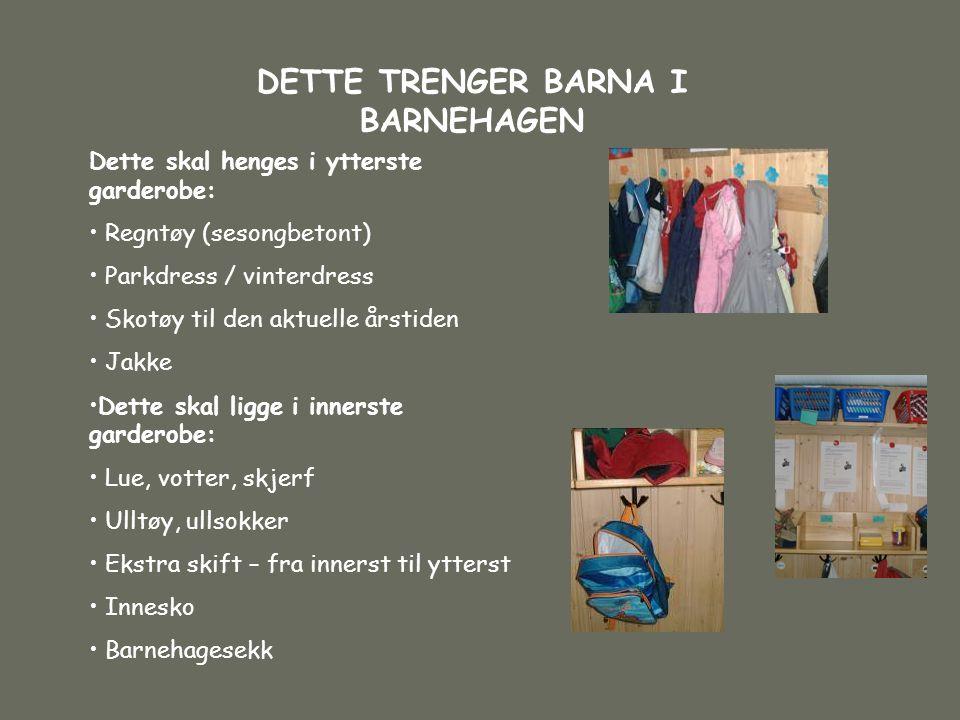 DETTE TRENGER BARNA I BARNEHAGEN