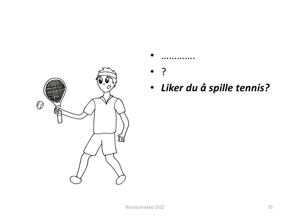 Liker du å spille tennis