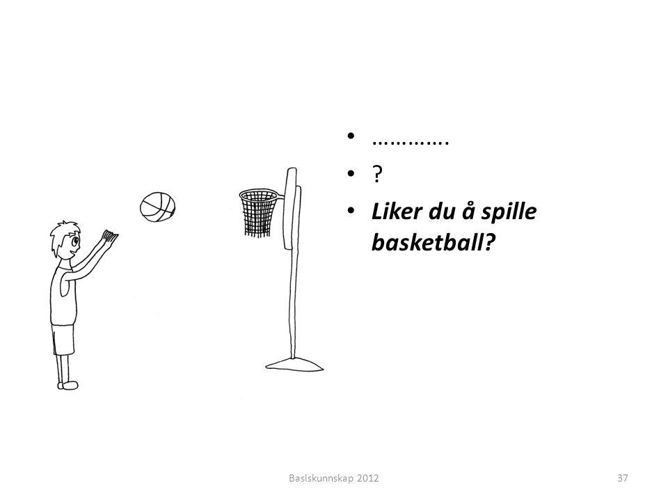 Liker du å spille basketball