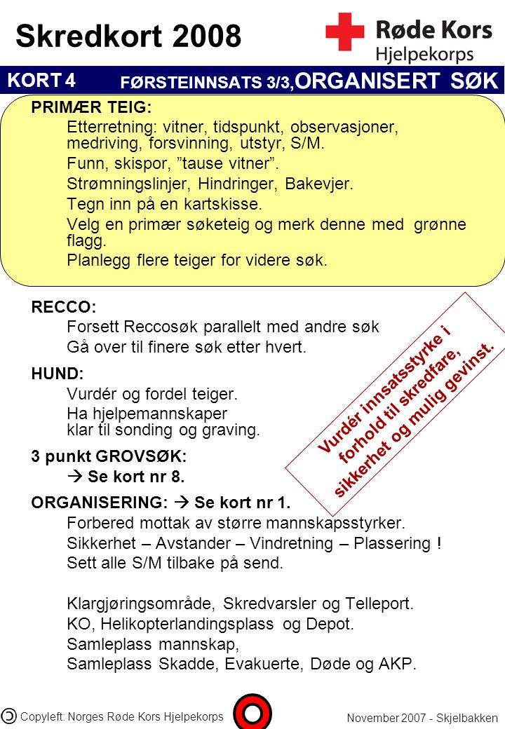 FØRSTEINNSATS 3/3,ORGANISERT SØK