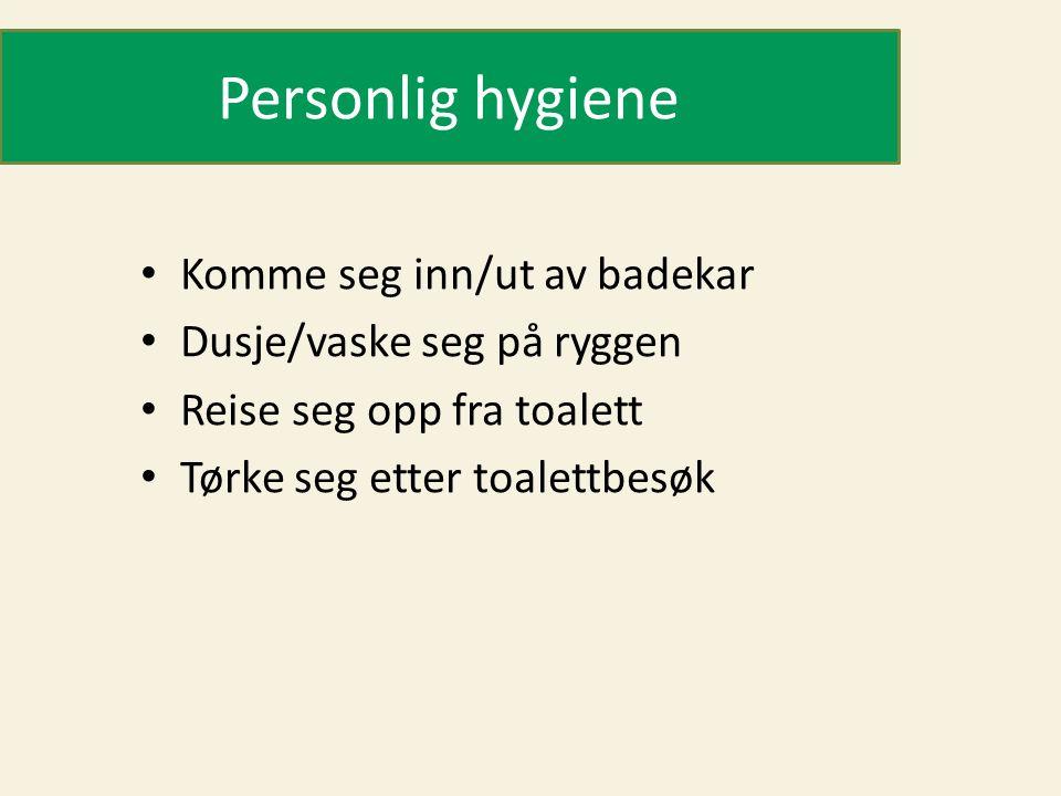 Personlig hygiene Komme seg inn/ut av badekar