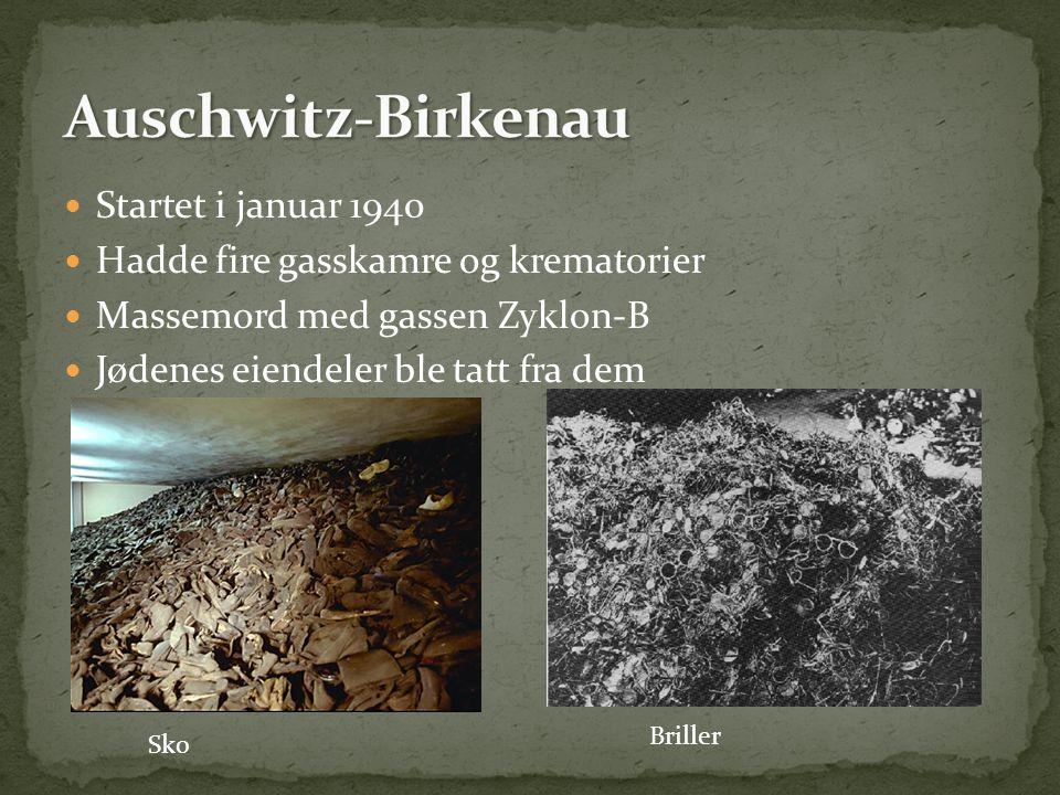 Auschwitz-Birkenau Startet i januar 1940