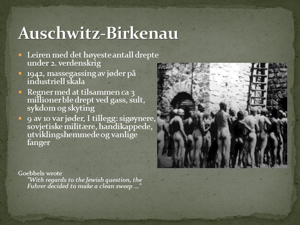 Auschwitz-Birkenau Leiren med det høyeste antall drepte under 2. verdenskrig. 1942, massegassing av jøder på industriell skala.