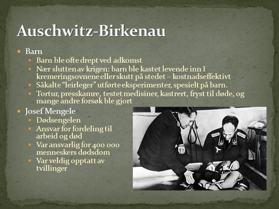 Auschwitz-Birkenau Barn Josef Mengele Barn ble ofte drept ved adkomst