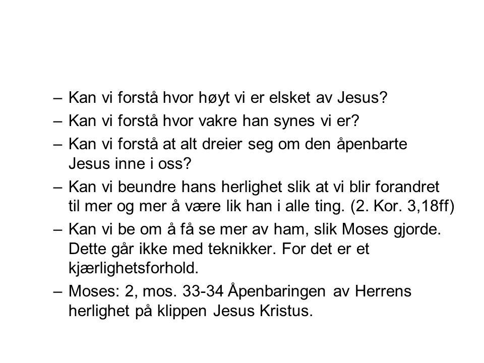 Kan vi forstå hvor høyt vi er elsket av Jesus