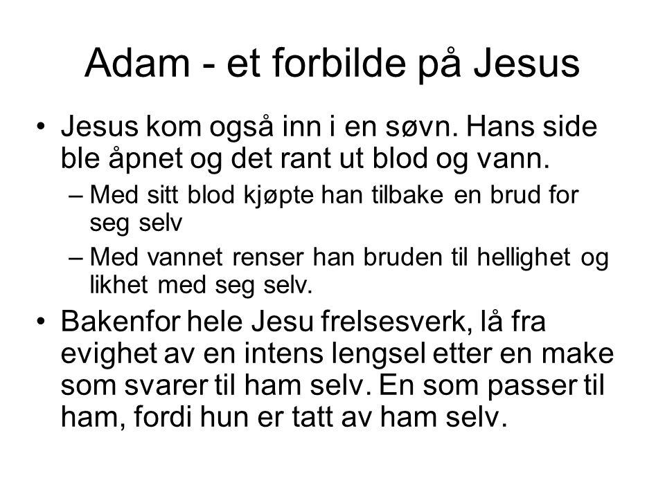 Adam - et forbilde på Jesus