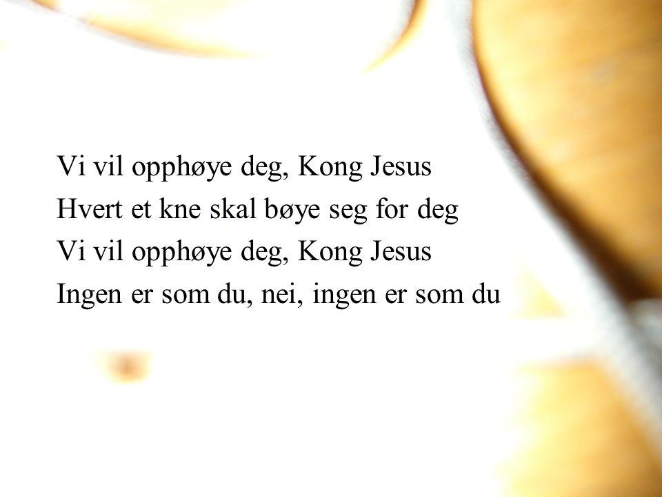 Vi vil opphøye deg, Kong Jesus