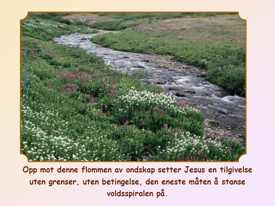 Opp mot denne flommen av ondskap setter Jesus en tilgivelse uten grenser, uten betingelse, den eneste måten å stanse voldsspiralen på.