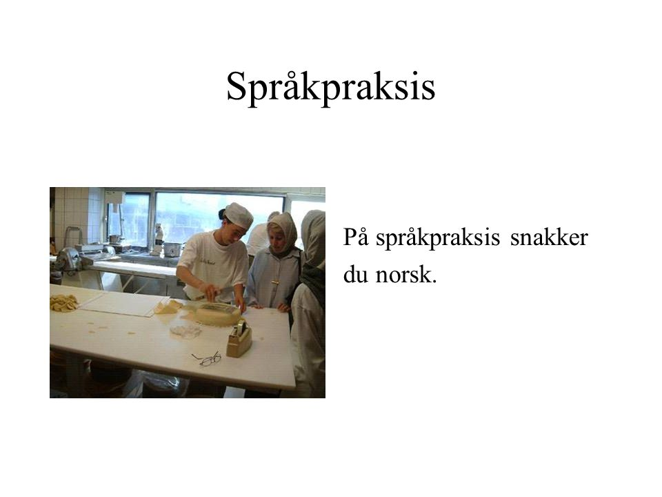 Språkpraksis På språkpraksis snakker du norsk.