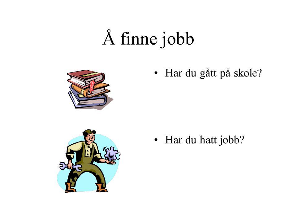 Å finne jobb Har du gått på skole Har du hatt jobb