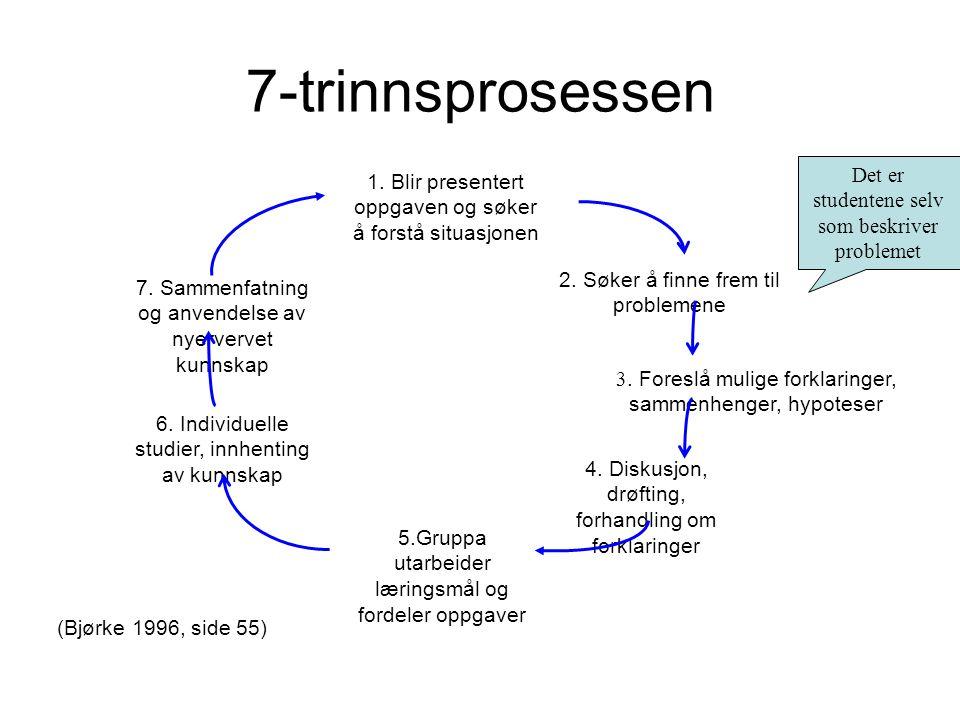 7-trinnsprosessen Det er studentene selv som beskriver problemet