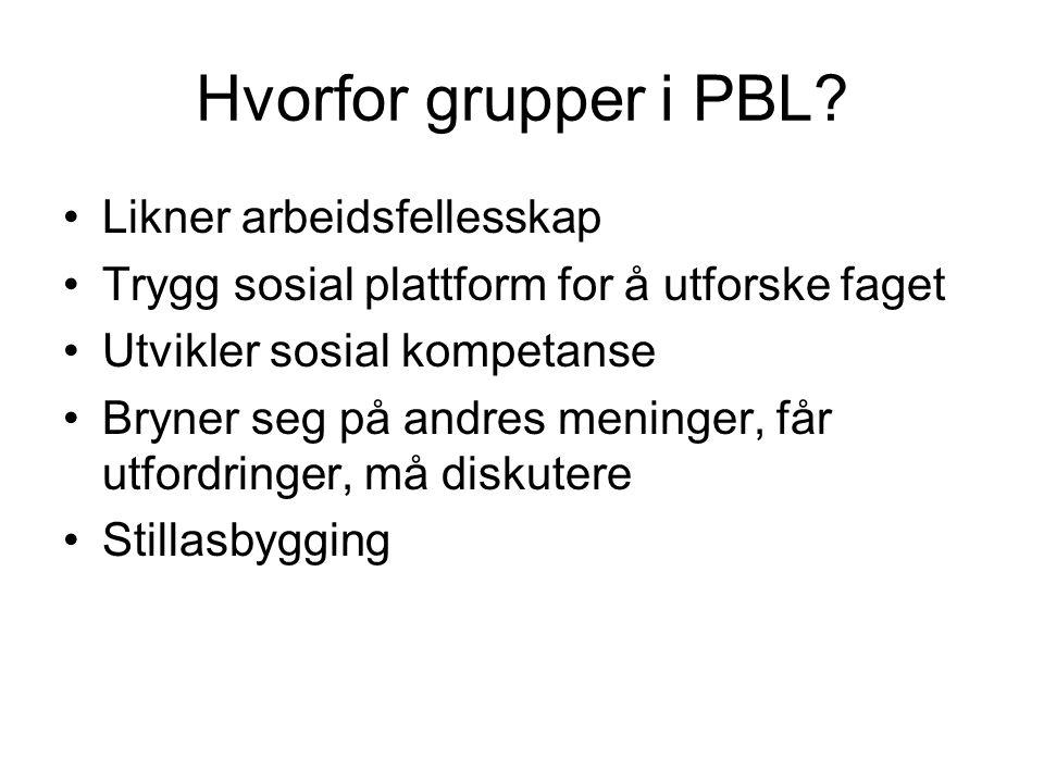 Hvorfor grupper i PBL Likner arbeidsfellesskap