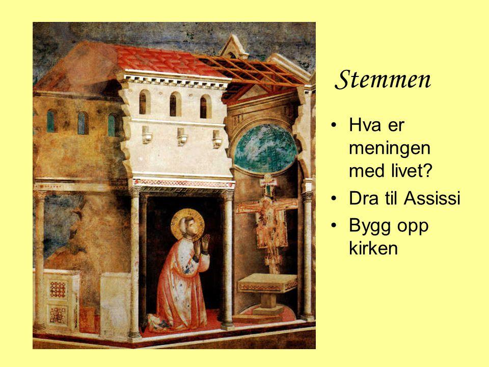 Stemmen Hva er meningen med livet Dra til Assissi Bygg opp kirken