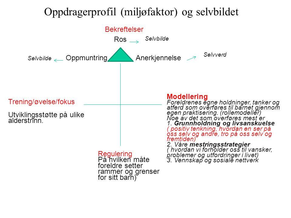 Oppdragerprofil (miljøfaktor) og selvbildet