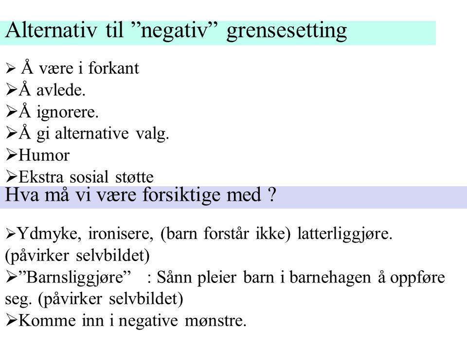 Alternativ til negativ grensesetting