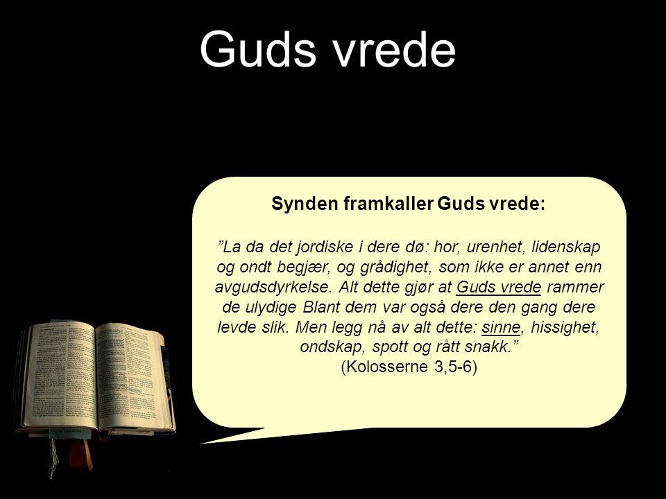 Synden framkaller Guds vrede: