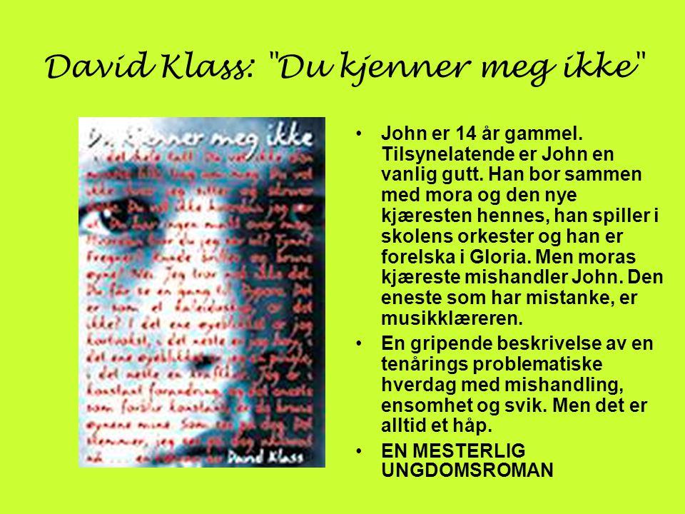 David Klass: Du kjenner meg ikke