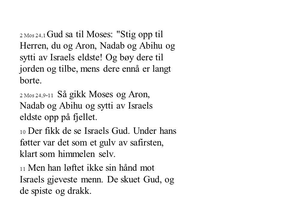 2 Mos 24,1 Gud sa til Moses: Stig opp til Herren, du og Aron, Nadab og Abihu og sytti av Israels eldste! Og bøy dere til jorden og tilbe, mens dere ennå er langt borte.