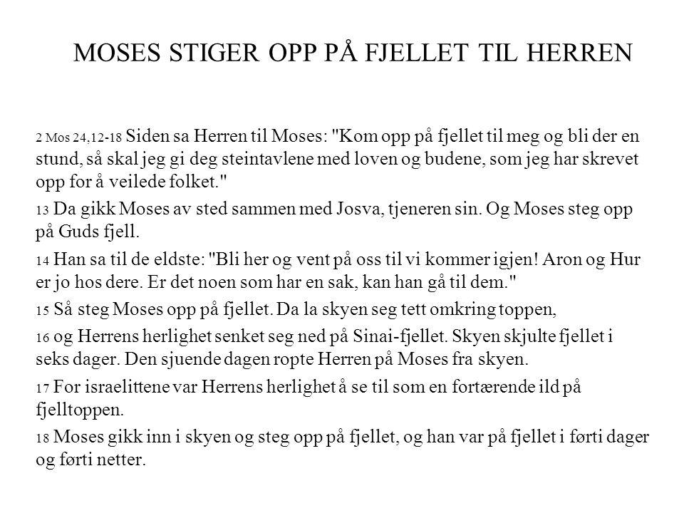 MOSES STIGER OPP PÅ FJELLET TIL HERREN