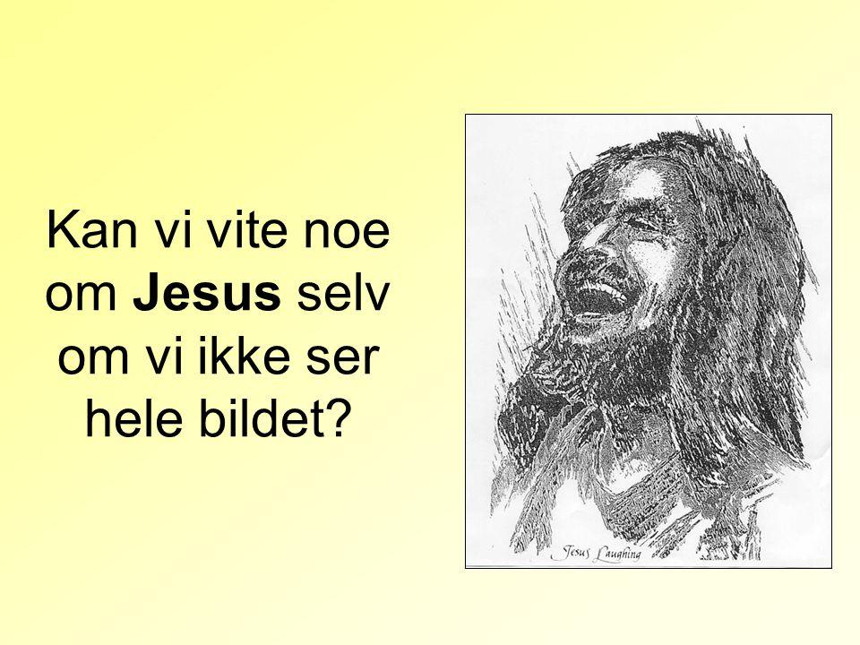 Kan vi vite noe om Jesus selv om vi ikke ser hele bildet