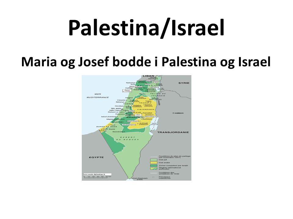Palestina/Israel Maria og Josef bodde i Palestina og Israel