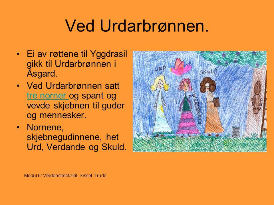 Ved Urdarbrønnen. Ei av røttene til Yggdrasil gikk til Urdarbrønnen i Åsgard.