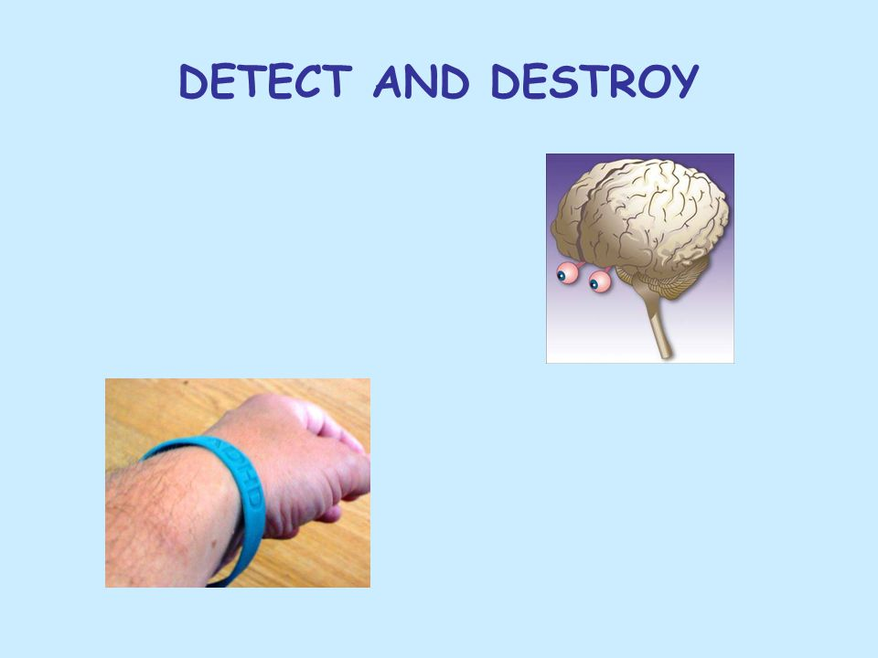 DETECT AND DESTROY