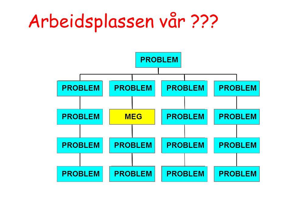 Arbeidsplassen vår PROBLEM PROBLEM PROBLEM PROBLEM PROBLEM PROBLEM