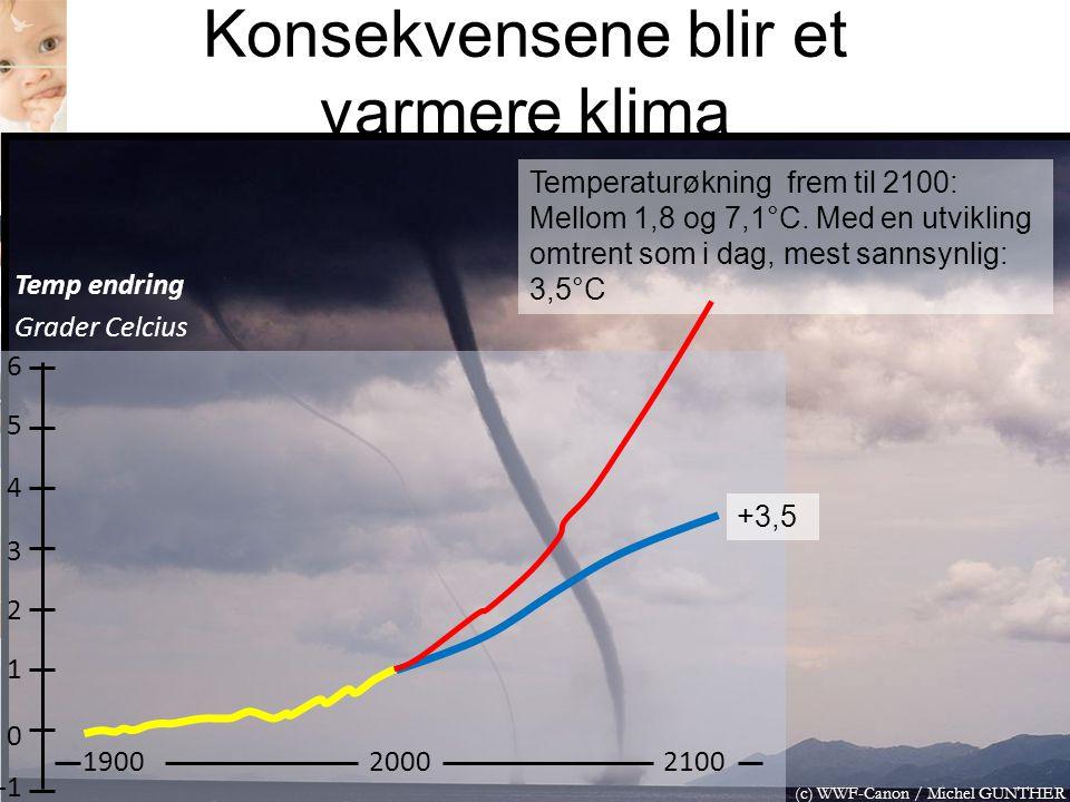 Konsekvensene blir et varmere klima