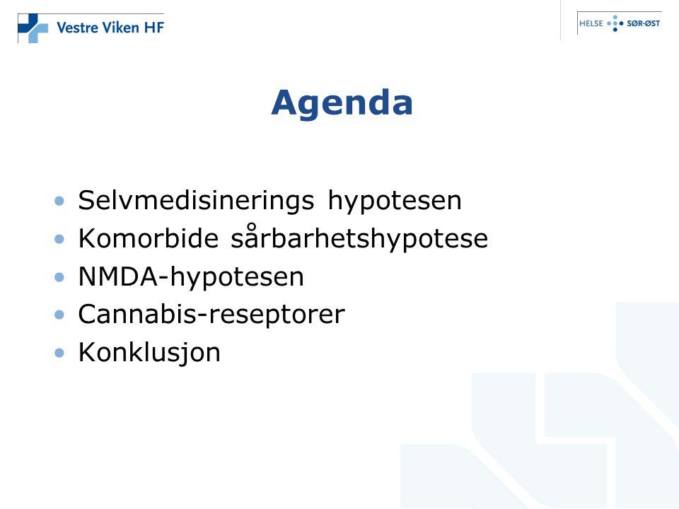 Agenda Selvmedisinerings hypotesen Komorbide sårbarhetshypotese