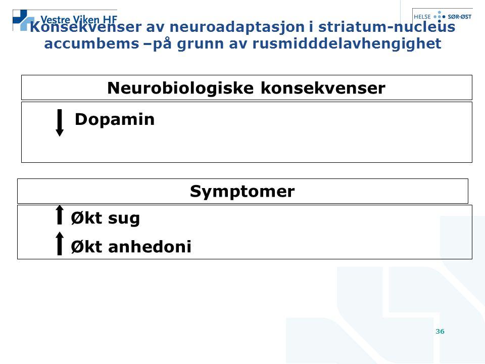 Neurobiologiske konsekvenser