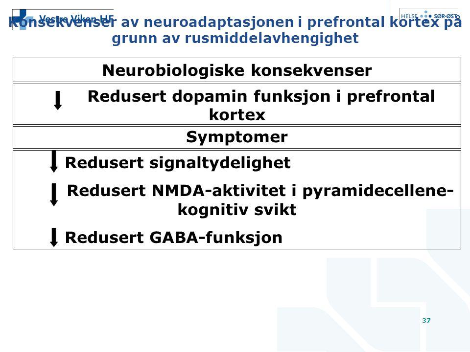 Konsekvenser av neuroadaptasjonen i prefrontal kortex på grunn av rusmiddelavhengighet