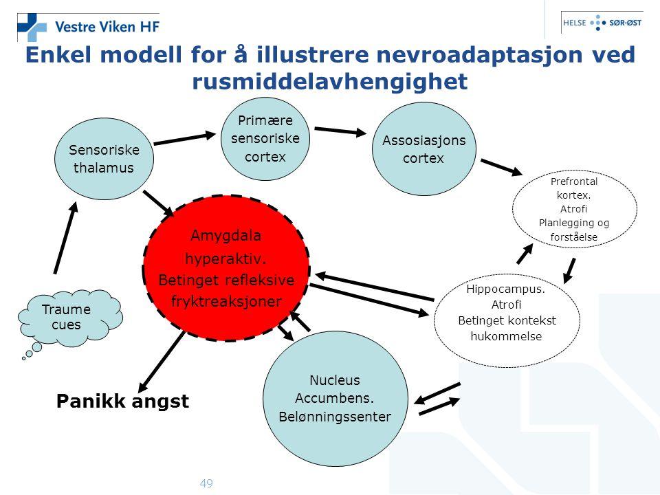 Enkel modell for å illustrere nevroadaptasjon ved rusmiddelavhengighet