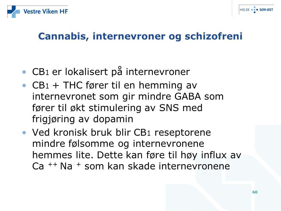 Cannabis, internevroner og schizofreni