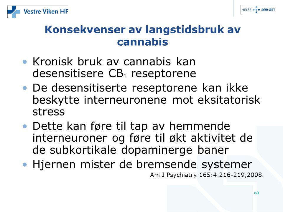 Konsekvenser av langstidsbruk av cannabis