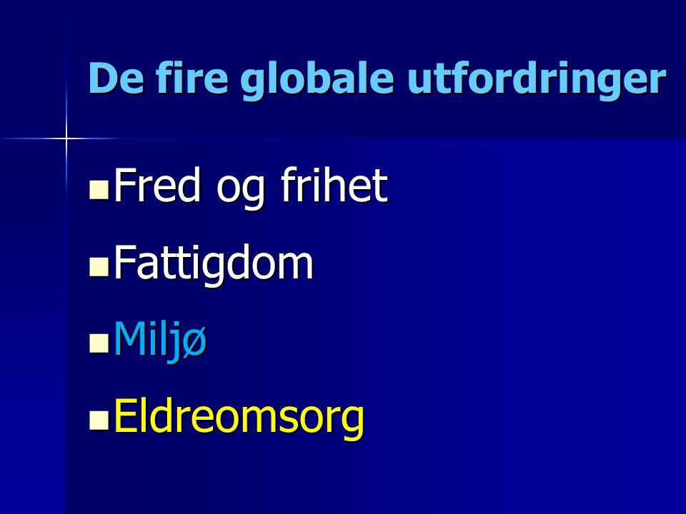 De fire globale utfordringer
