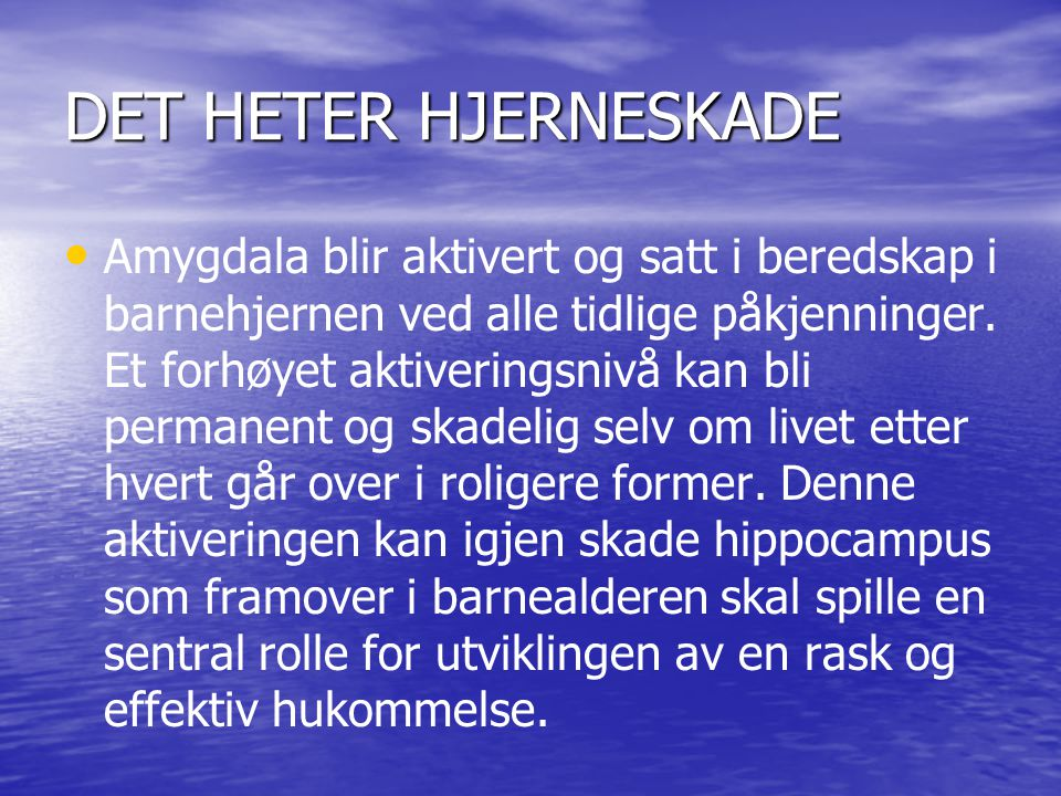 DET HETER HJERNESKADE