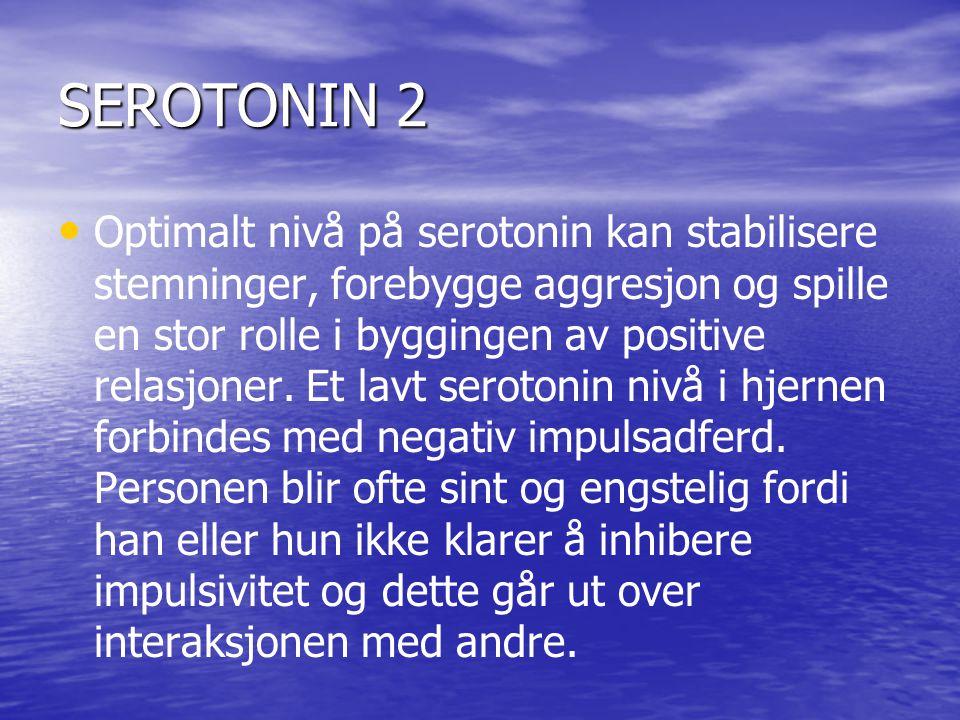 SEROTONIN 2