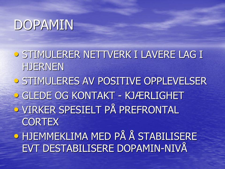 DOPAMIN STIMULERER NETTVERK I LAVERE LAG I HJERNEN