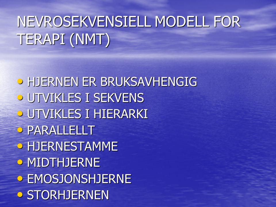 NEVROSEKVENSIELL MODELL FOR TERAPI (NMT)
