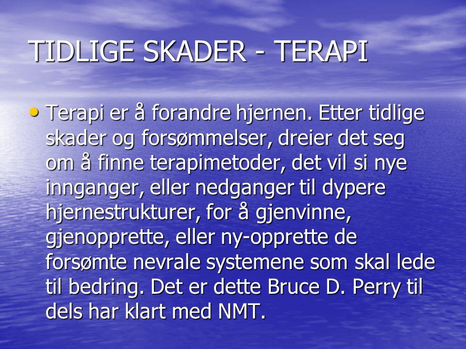 TIDLIGE SKADER - TERAPI