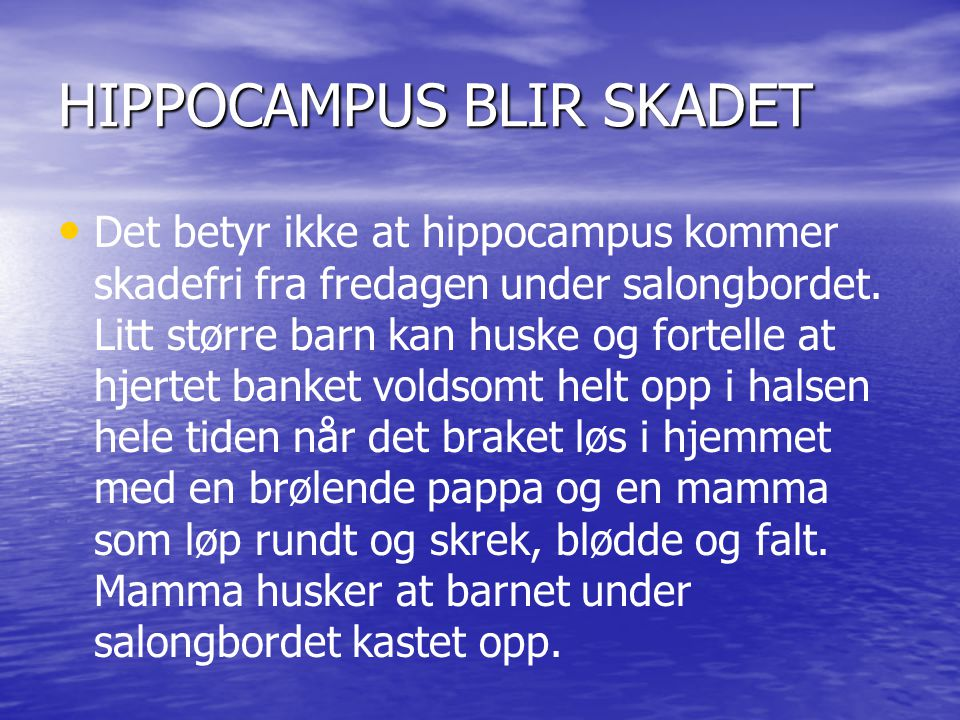 HIPPOCAMPUS BLIR SKADET